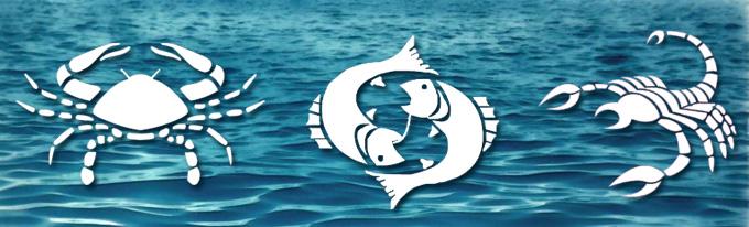 елемент вода 5